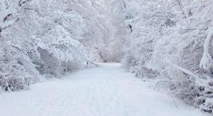 К чему снится белый снег, значение сна с фото