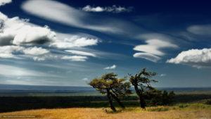 К чему снится ветер, значение сна с фото