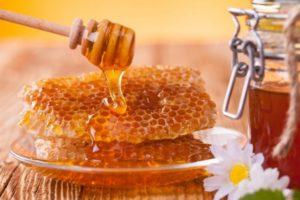 Приснились пчелы и мед, значение